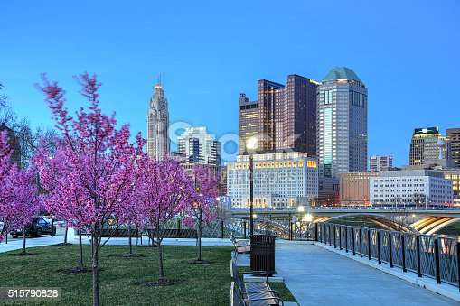 1024248138istockphoto Red buds blooming downtown dusk 515790828