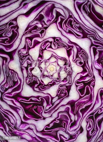 Red Cabbage half cut macro texture detail full frame cross section