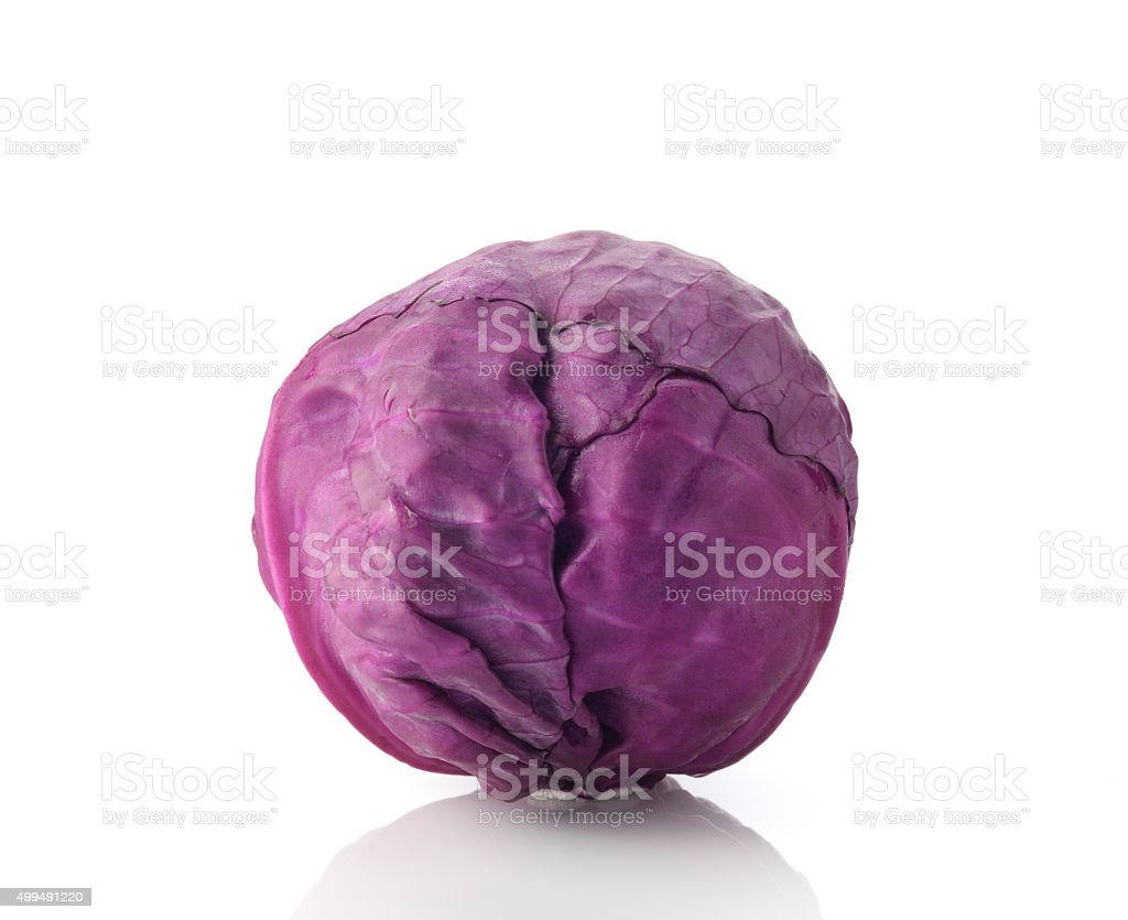 Red Cabbage on White Background stock photo