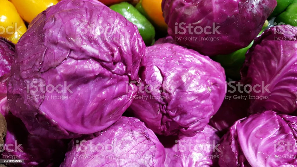 red cabbage radiccio isolated on white stock photo