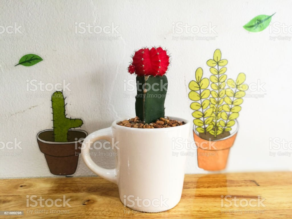 red cactus on white cup decorated on wooden table with cute plant painted on the wall stock photo