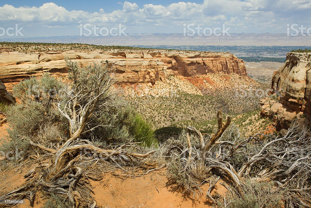 Red Canyon - Colorado National Monument stock photo