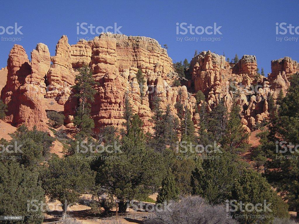 Red Canyon - Utah stock photo