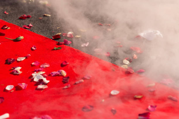 Red Carpet Smoke And Rose Petals Stock Photo More Pictures Of