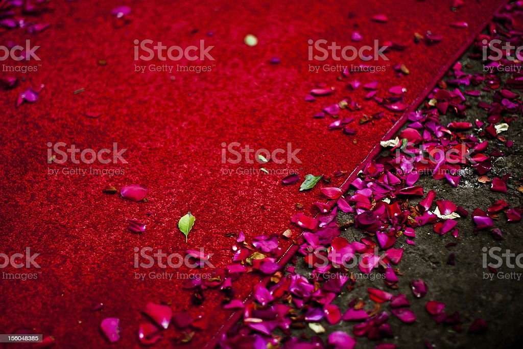 Red Carpet With Rose Petals Stock Photo More Pictures Of