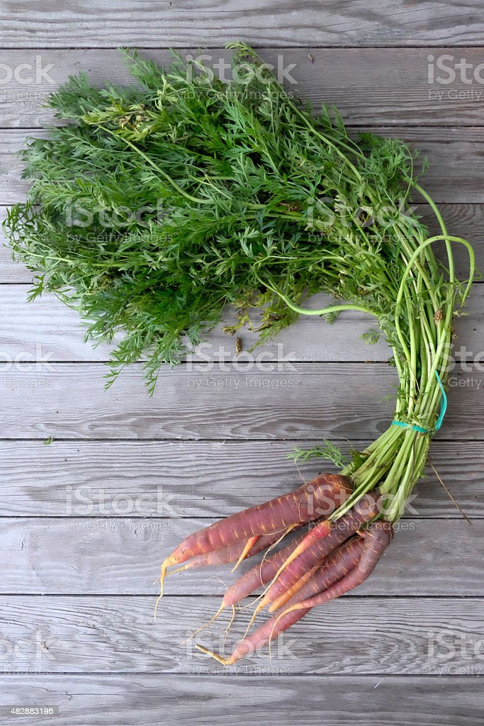 Red carrots stock photo