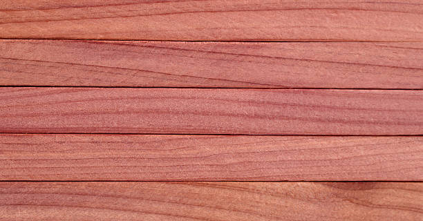 Red Cedar Wood ~ Western red cedar pictures images and stock photos istock