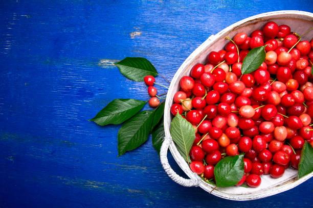 cerezas rojas en canasta blanca sobre fondo azul madera. cereza de cerca. vista superior. copia espacio. - negras maduras fotografías e imágenes de stock