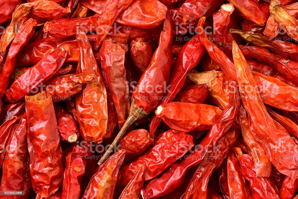red chili peppe stock photo