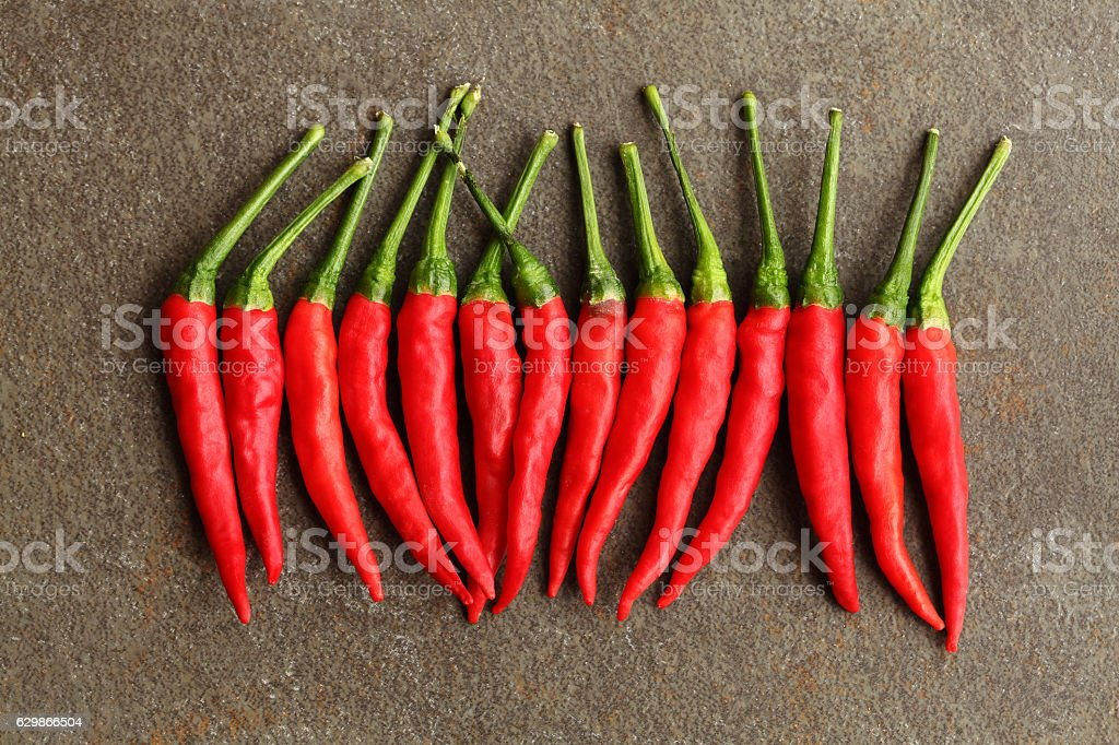 Red Chili Pepper over Gray background stock photo