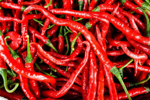Rote Chili Peppers – Foto
