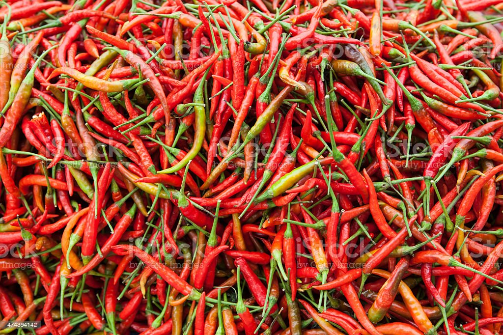 Red Chili Peppers with Green Stalks stock photo