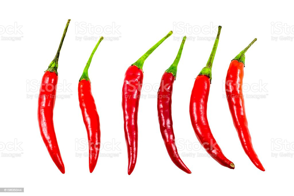 Red chilli pepper isolated on white background, Clipping path included. stock photo
