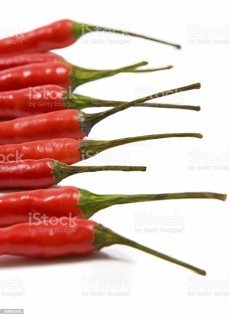 Red chilli peppers royalty-free stock photo