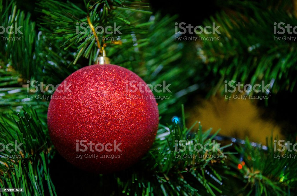 Red Christmas ball on the christmas tree photo libre de droits