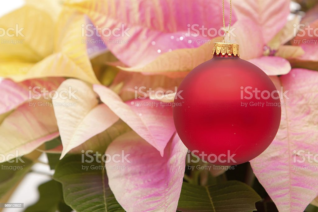 Red Christmas bauble royalty-free stock photo