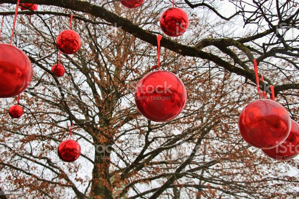 red christmas baubles on a large tree outdoors salzburg austria royalty free - Large Red Christmas Decorations