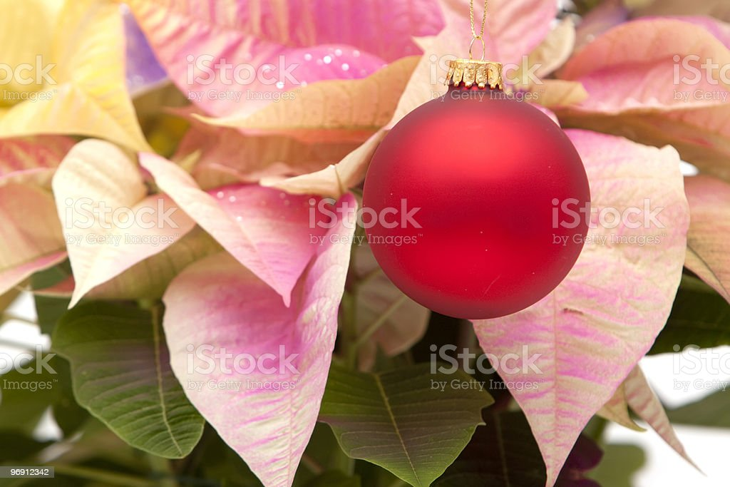 Red Christmas ornament or bauble royalty-free stock photo