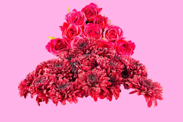 red chrysanthemums & pink roses on a dusky pink back ground - mika foto e immagini stock