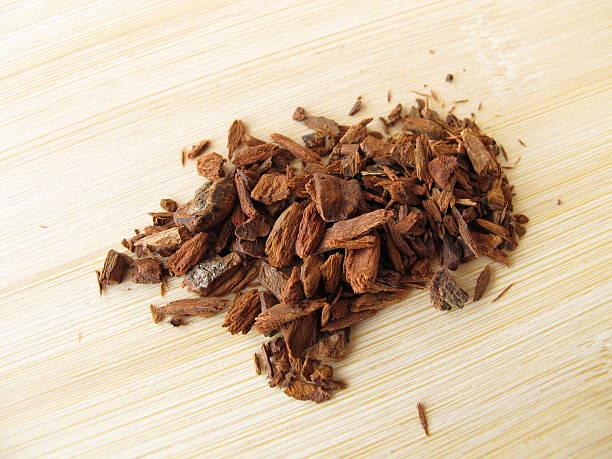 Red Cinchona bark, Cinchonae cortex stock photo