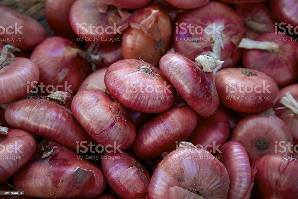 Red cipollini onions stock photo