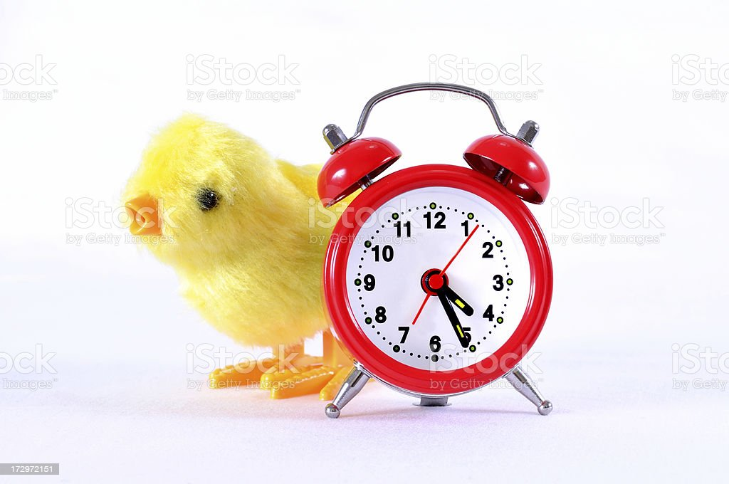 red clock and toy chick royalty-free stock photo