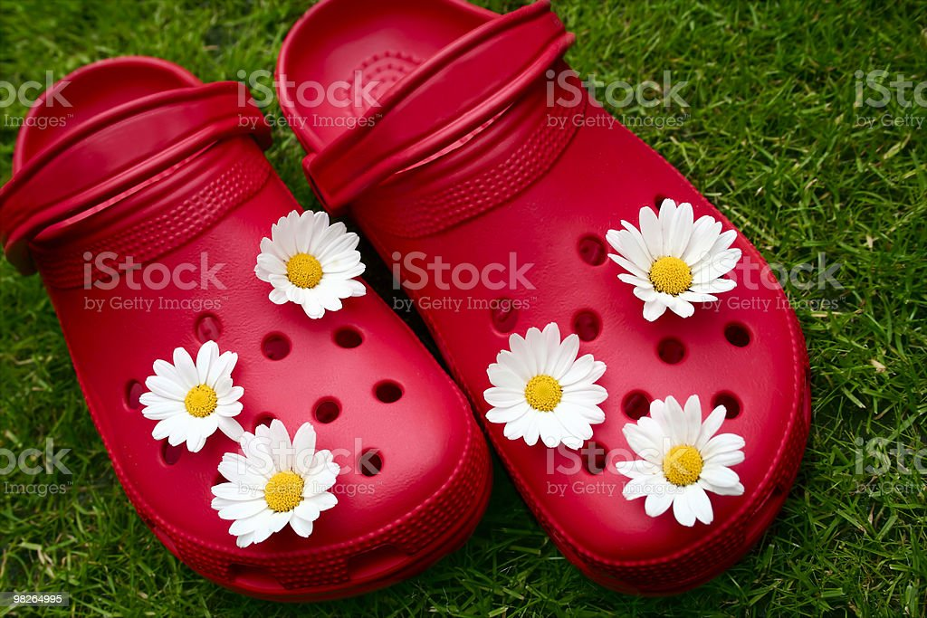 Red clogs with daisies on grass royalty-free stock photo