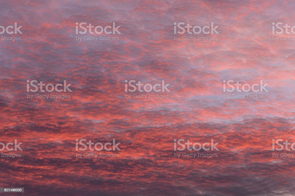 red cloud on sky foto stock royalty-free
