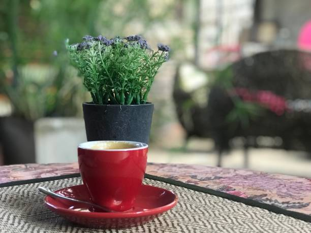 Red coffee cup with flower and blurred bokeh lights picture id1130831822?b=1&k=6&m=1130831822&s=612x612&w=0&h=ovpczcy5wmv5xhhf4it7ednxvlznuf1cjxlmeudygpi=