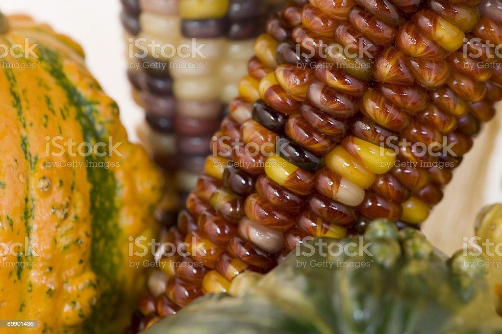 Rojo maíz con squash foto de stock libre de derechos