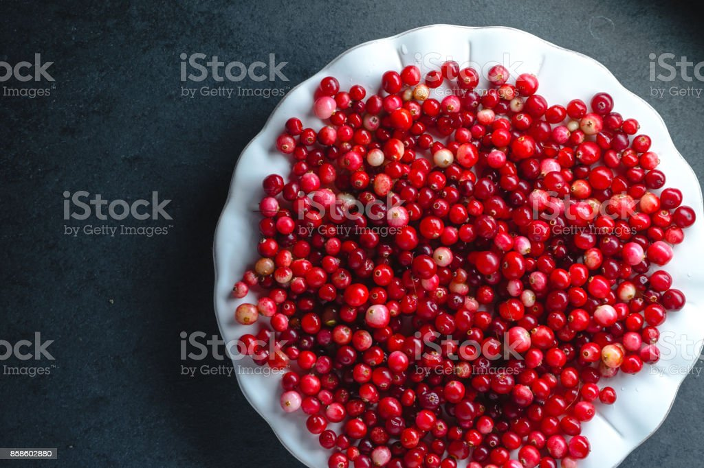 Red cranberries on a large white plate on a gray background stock photo