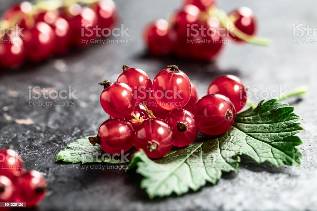 Red currant and leaf on black texture background close-up. - Royalty-free Antioxidant Stock Photo