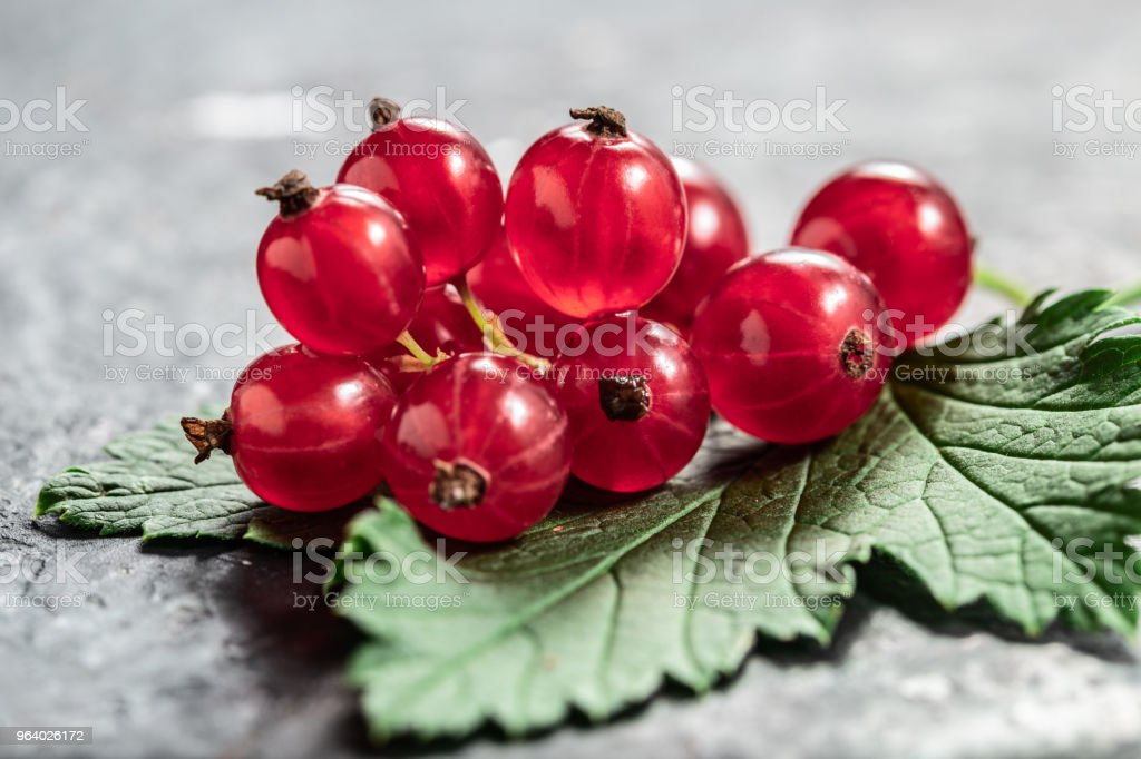 Red currant  and leaf on black texture background with copyspace close-up - Royalty-free Antioxidant Stock Photo