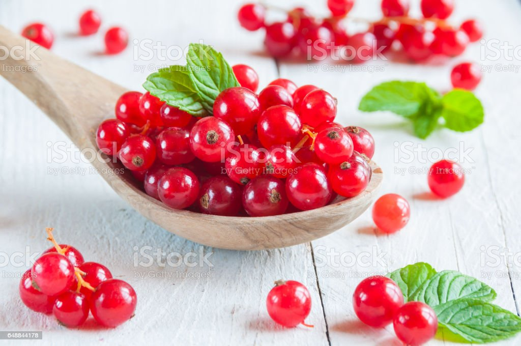 Red currant berries stock photo