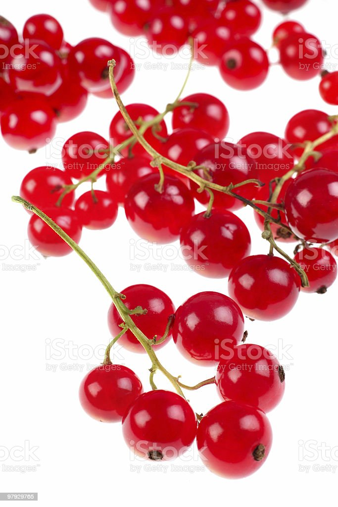 Red currant berry royalty-free stock photo