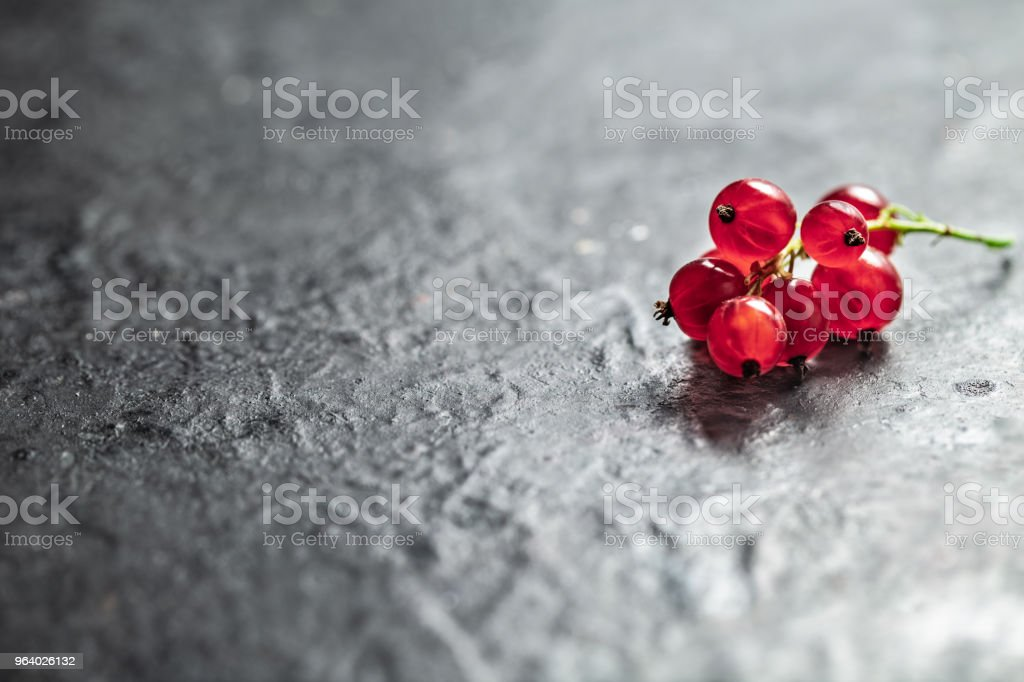 Red currant berry twig on black textured background - Royalty-free Antioxidant Stock Photo