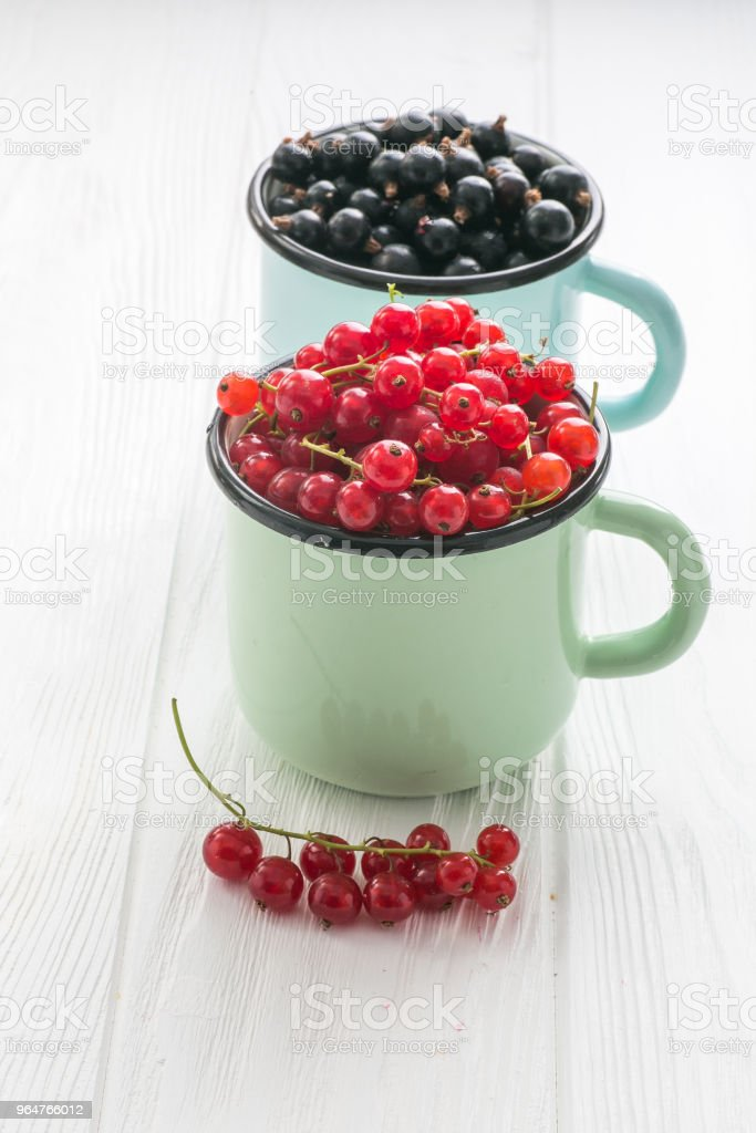 Red currant in enamel tea cups on a white table royalty-free stock photo