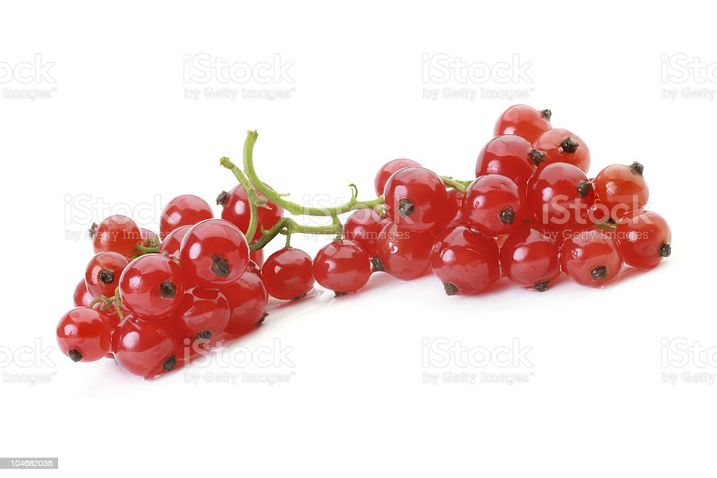 Red currant isolated on white background royalty-free stock photo