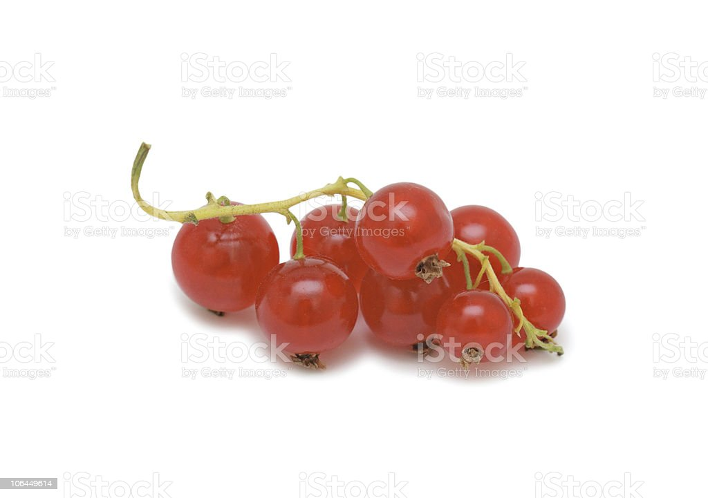 Red currant, isolated royalty-free stock photo