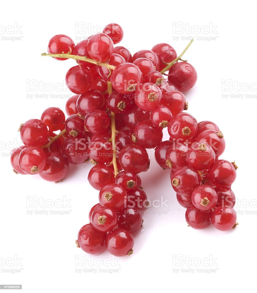Red currant royalty free stockfoto