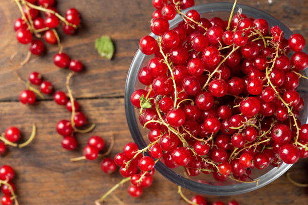 Red currant scattered stock photo