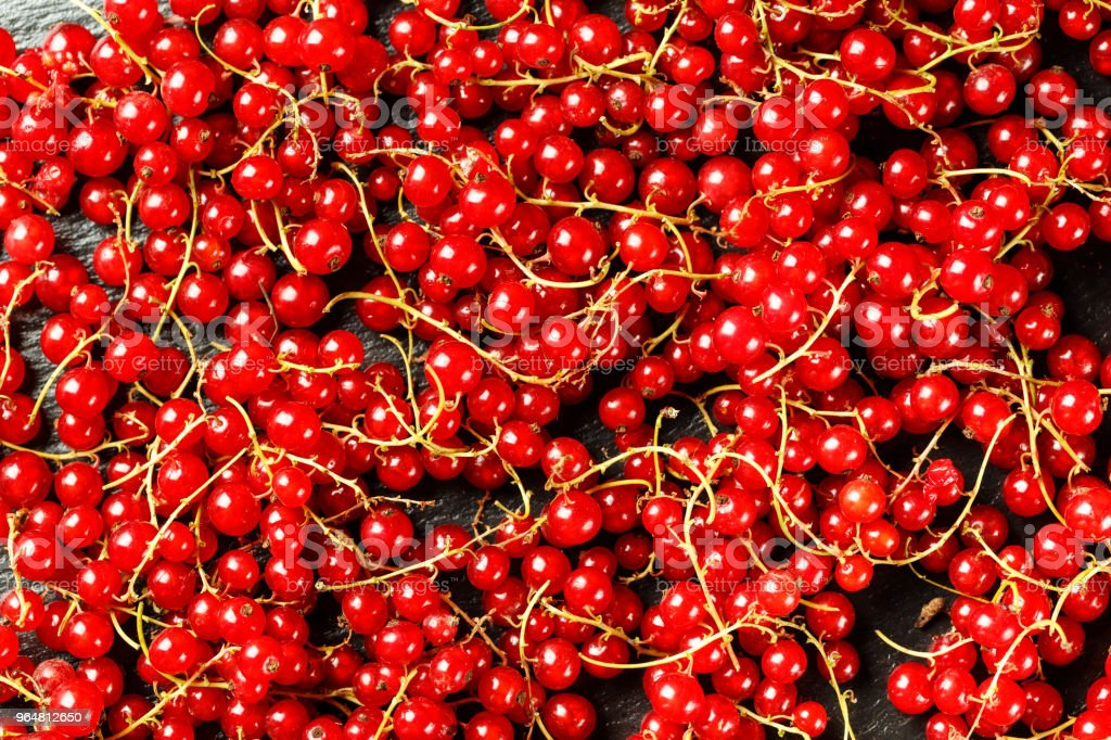 red currant spilled as a background royalty-free stock photo