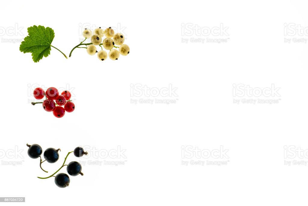 red currant, white currant and black currant berries on white background with copy space stock photo