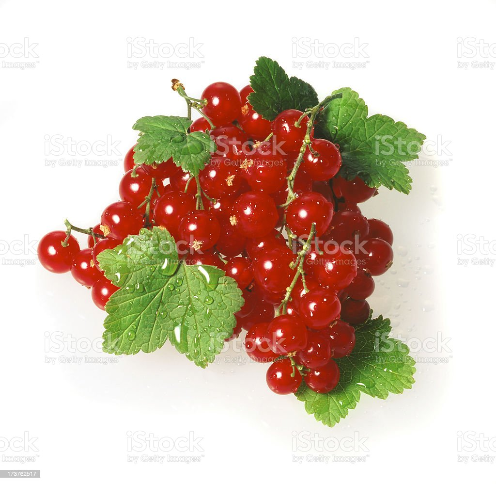 Red Currant with Leafs royalty-free stock photo