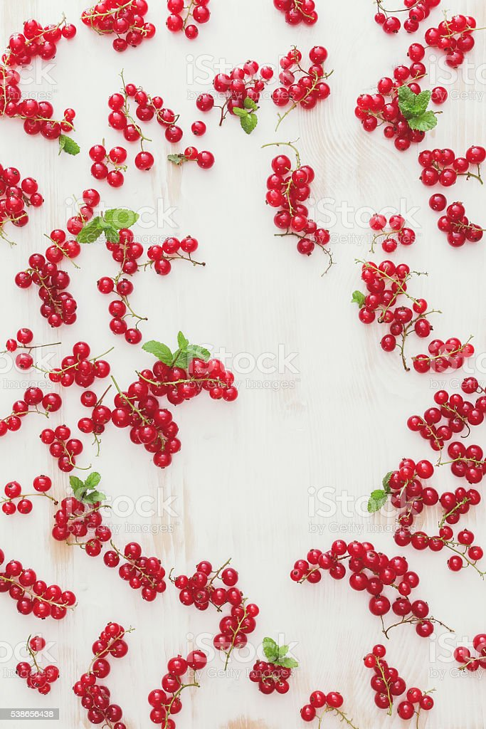 Red currants background stock photo