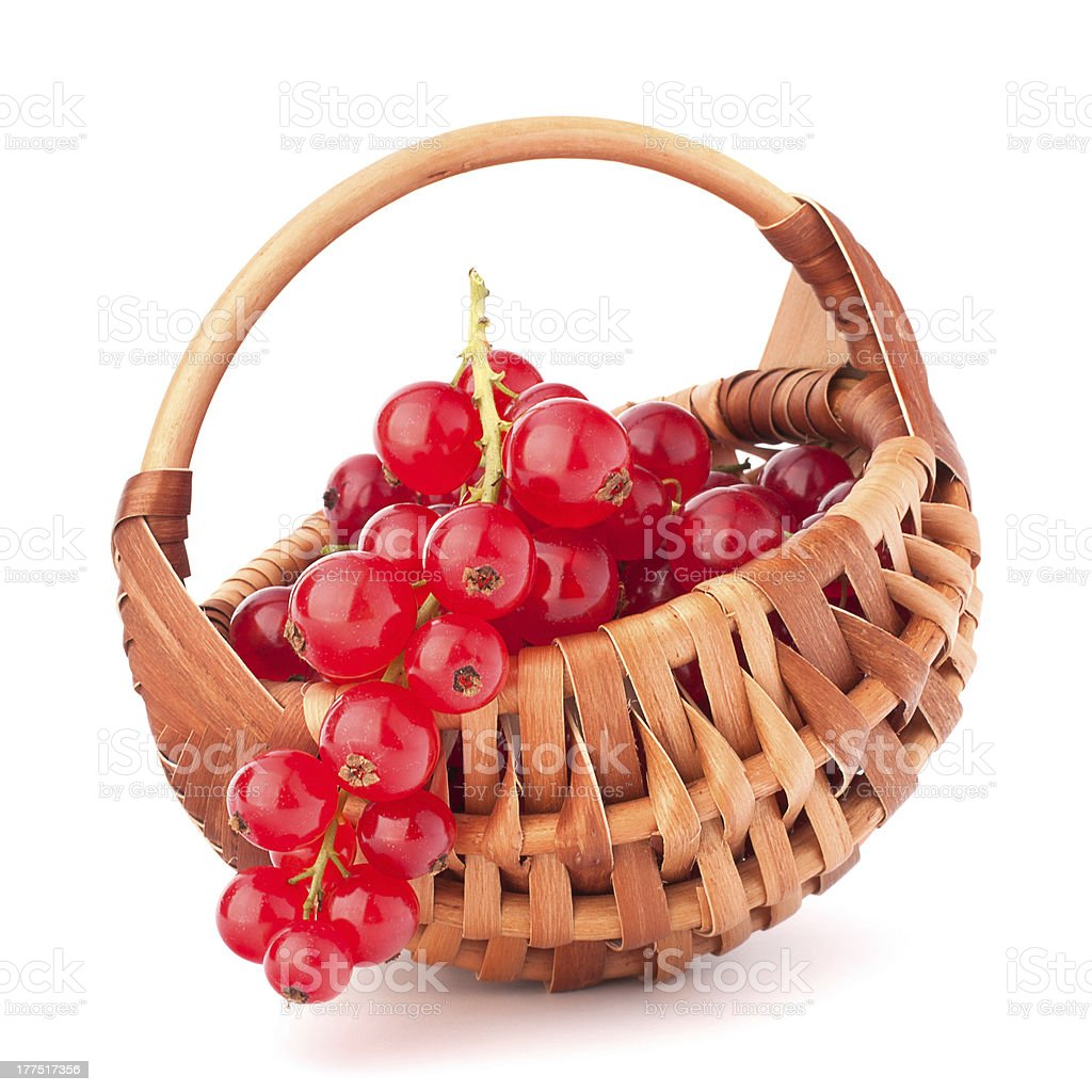 Red currants in basket royalty-free stock photo