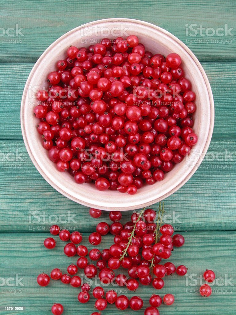 red currants royalty-free stock photo
