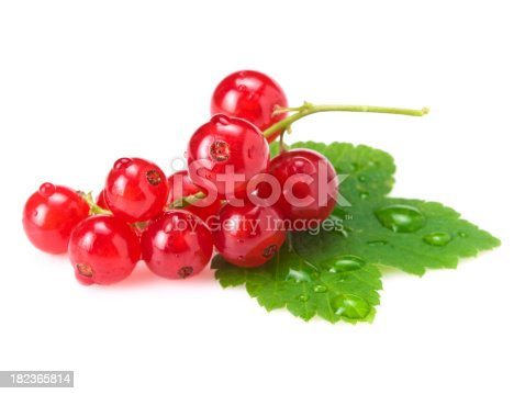 istock red currants 182365814