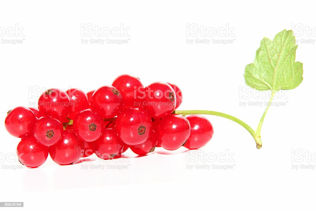 red currants with leave isolated on white royalty-free stock photo