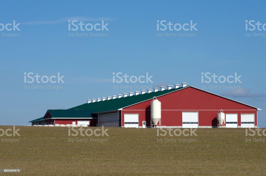 Red Dairy Barn on Horizon stock photo